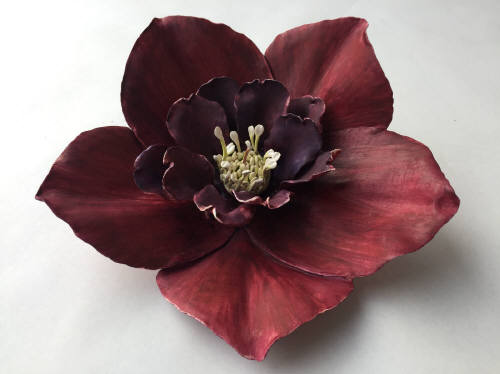 Artist: Gina Holt, Title: Hellebore - Purple - click for larger image