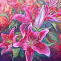 Debbie Tomassi - Day Lily