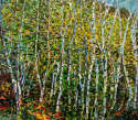 Pat Tolle - Birches