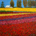 Pat Tolle - Tulip Fields